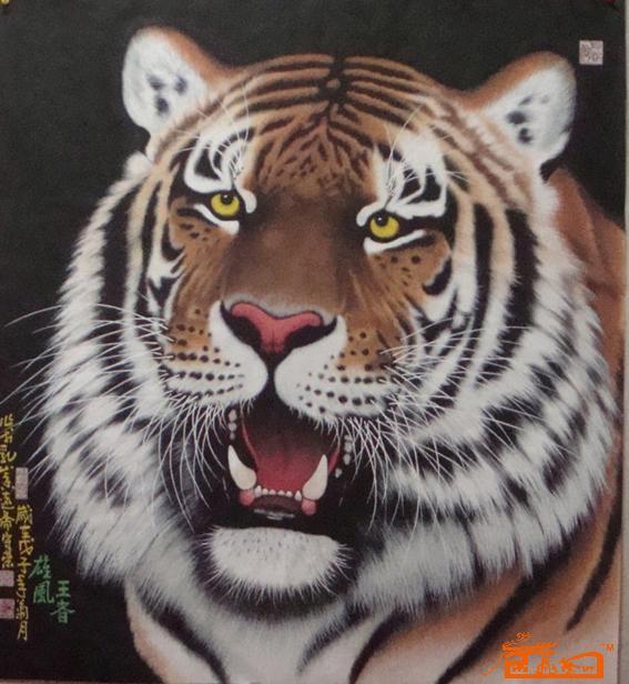 老虎的彩色铅笔画